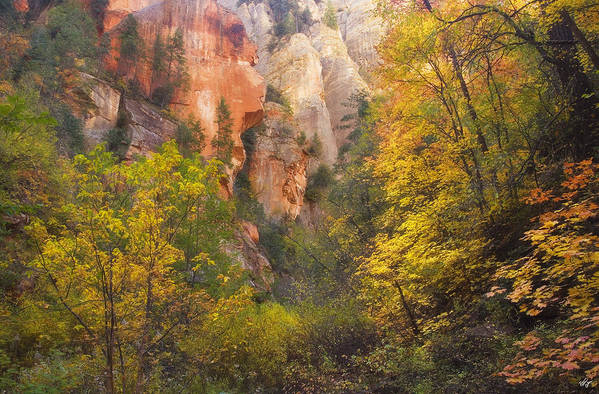 West Fork Oak Creek Canyon Art Print featuring the photograph Canyon Kaleidoscope by Peter Coskun