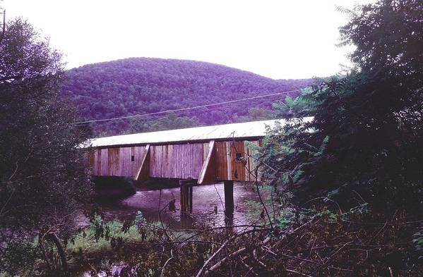 Bridge Art Print featuring the photograph 10602-17 by Mike Davis
