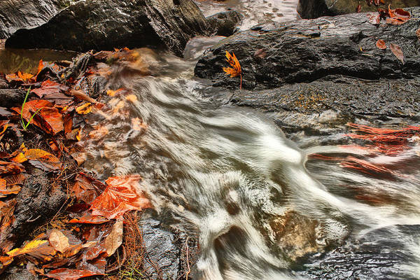 Landscape Art Print featuring the photograph Stream by Dennis OKeefe