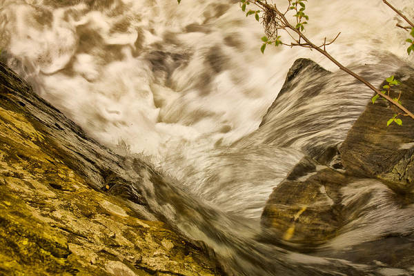 Landscape Art Print featuring the photograph Stream2 by Dennis OKeefe
