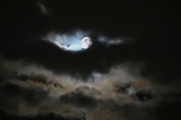 Moon Art Print featuring the photograph By The Light Of The Silvery Moon by Carol Hakobian