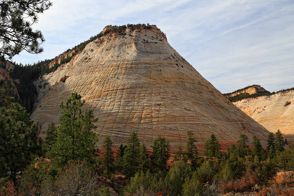 Checkerboard mesa in Zion National Park by Pierre Leclerc Photography