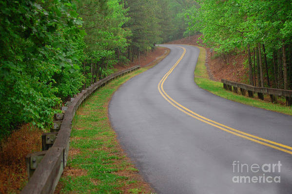 Nature Art Print featuring the photograph Winding Road by David Smith
