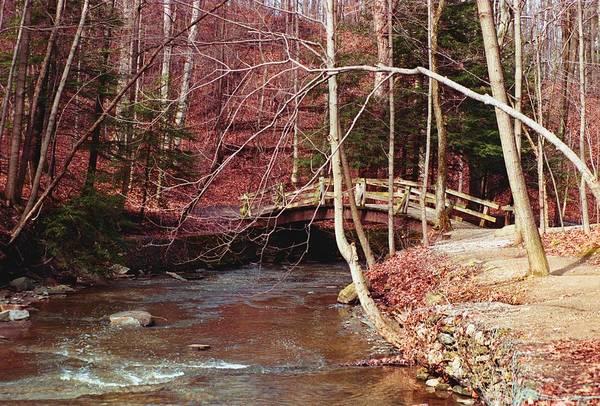 Bridge Art Print featuring the photograph 092908-5 by Mike Davis