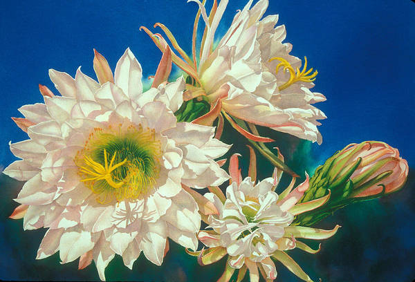 Floral Art Print featuring the print Encore by Mary Backer