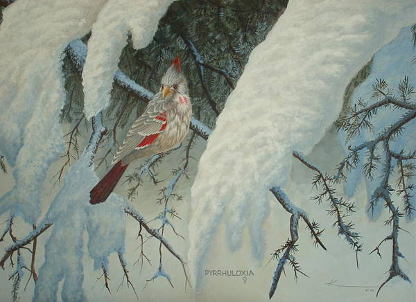 Birds Art Print featuring the painting A Female Pyrrhuloxia by Keith Kochenour