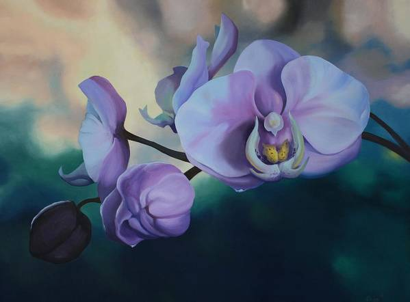 Oil On Canvas Art Print featuring the painting Orchid Dew by Michael Vires