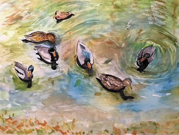 Just Ducky by Marita McVeigh