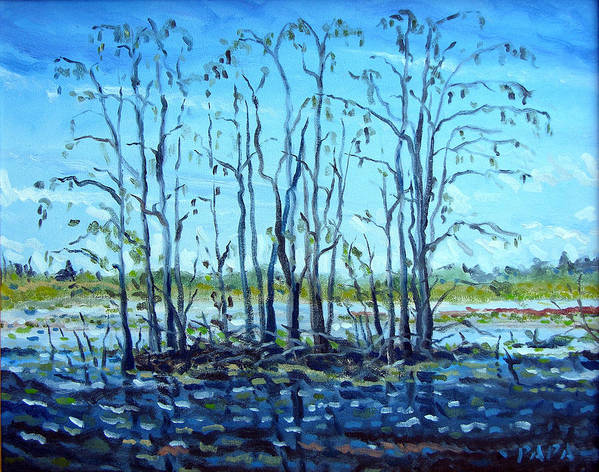 Loxahatchee Art Print featuring the painting At Loxahatchee by Ralph Papa