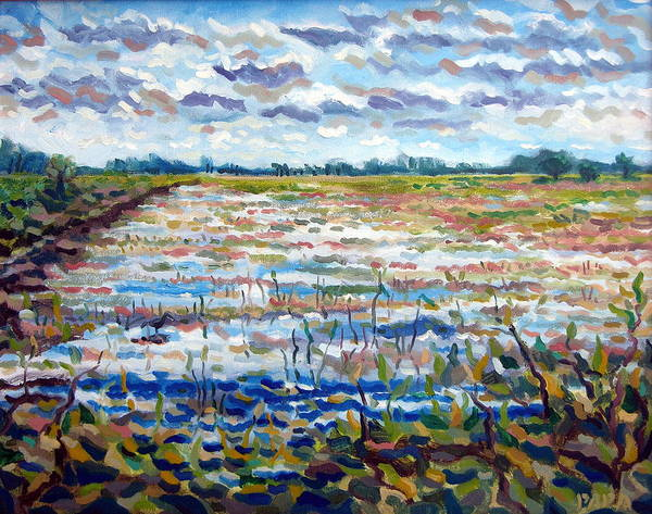 Loxahatchee Art Print featuring the painting Loxahatchee Wetlands by Ralph Papa