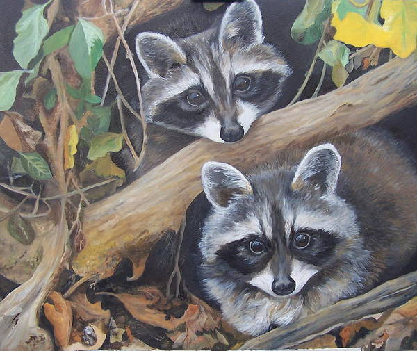 Raccoons Art Print featuring the painting Hidden Twins by Audrie Sumner