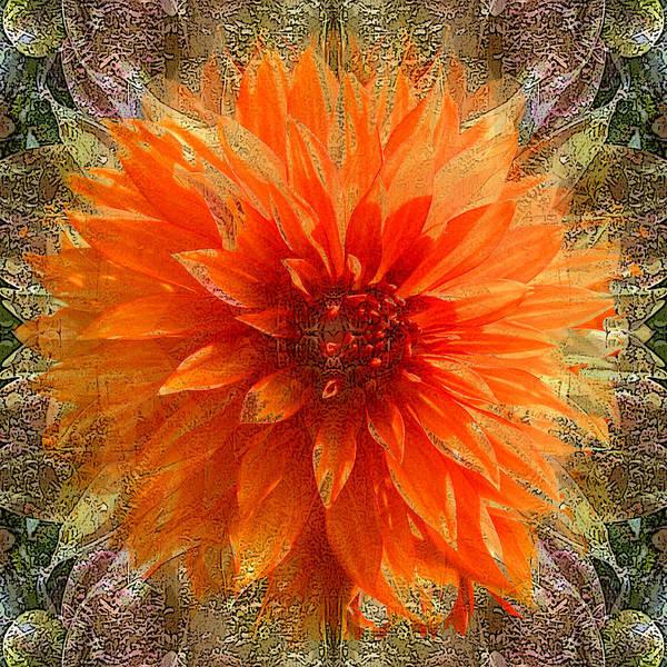 Digital Art Art Print featuring the photograph Chrysanthemum by Tom Romeo