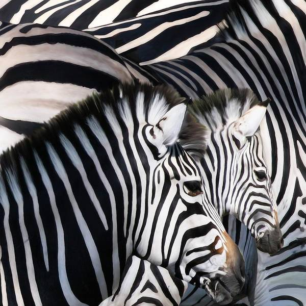 Zebras Art Print featuring the painting Zebra Family by Johnnie Boswell