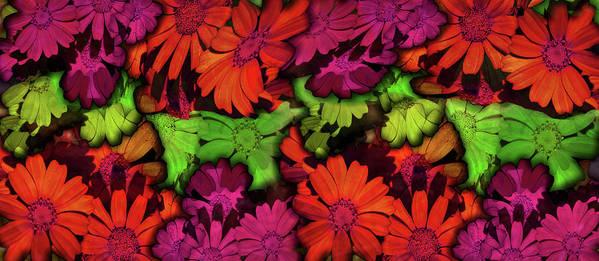 Nature Art Print featuring the digital art Flower Path by Efrat Fass