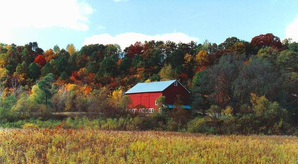 Barns Art Print featuring the photograph 080806-7 by Mike Davis