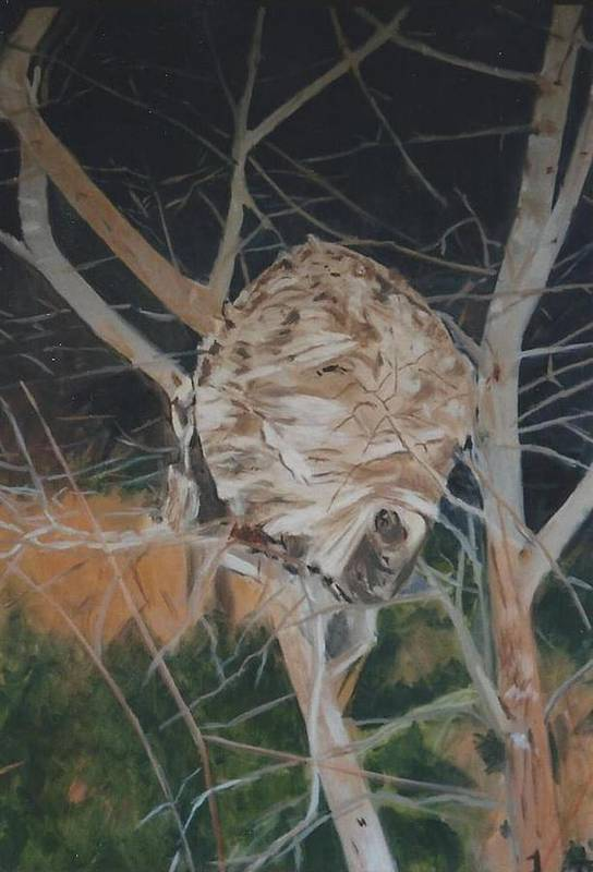 Hornets Art Print featuring the painting Hornet's Nest by Terry Forrest