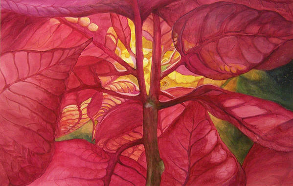 Floral;watercolor Floral;poinsettia;conceptual;poinsettias;christmas;holiday;flower;flowers;plant; Art Print featuring the painting Into the Light by Lois Mountz