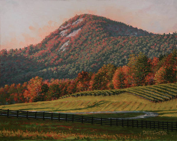 Afternoon view of Yonah Mountain by David Horton