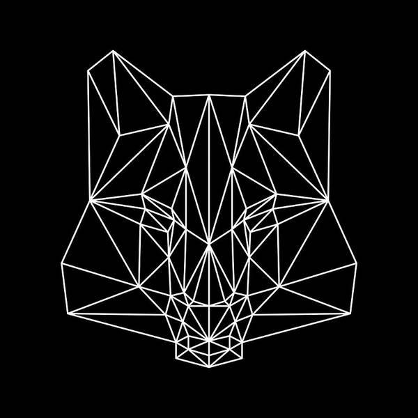 Night Fox by Naxart Studio