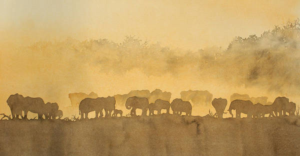 Elephant Art Print featuring the painting Elephant Dust by Alison Nicholls