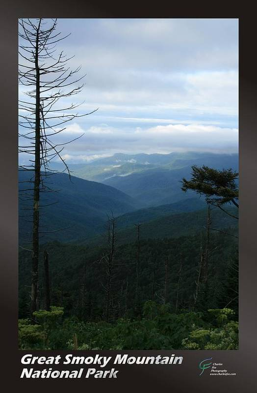 Great Art Print featuring the photograph Great Smoky Mountains Np 009 by Charles Fox