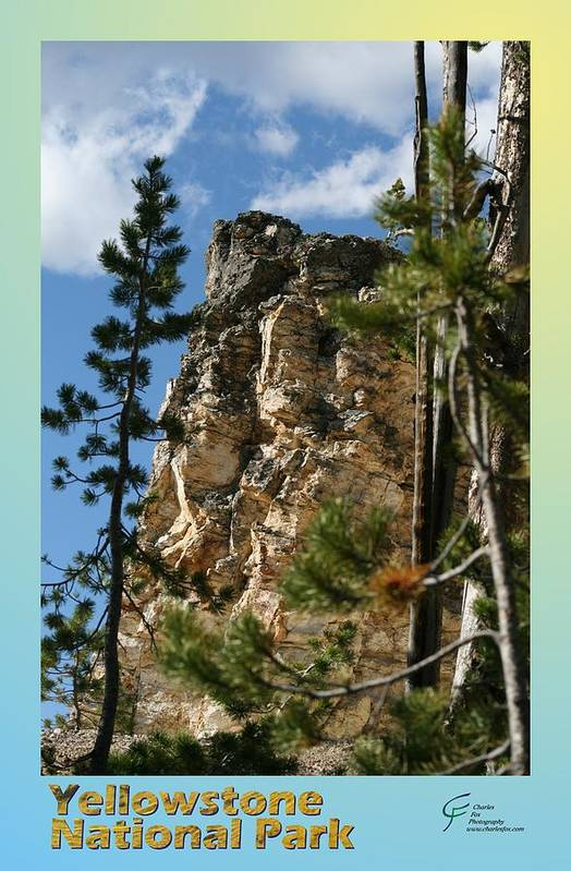 Yellowstone Art Print featuring the photograph Yellowstone Np 001 by Charles Fox