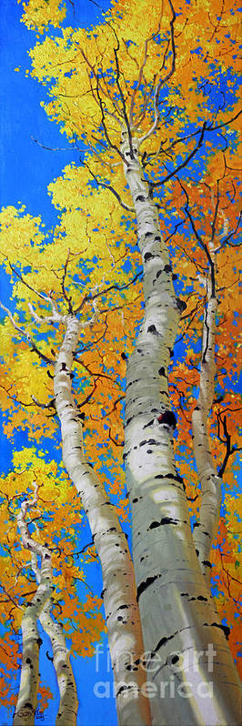 Fall Aspen Art Print featuring the painting Tall Aspen Trees by Gary Kim