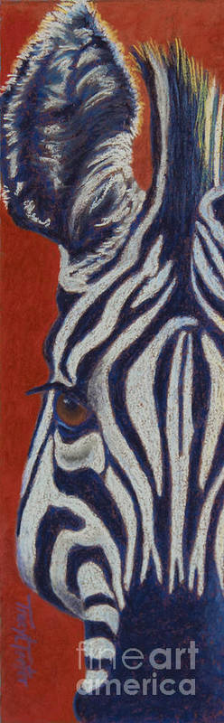 Zebra Art Print featuring the pastel African Stripes by Tracy L Teeter
