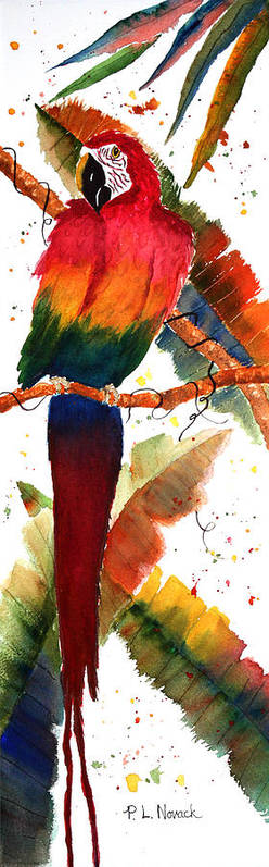 Macaw Art Print featuring the painting Macaw Feathers by Patricia Novack