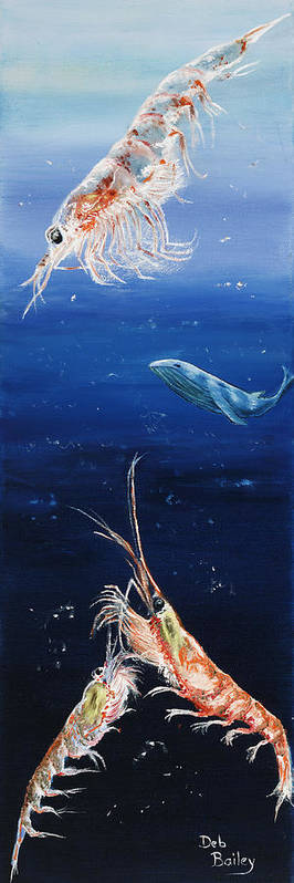 Baleen Whale Art Print featuring the painting Krill by Debra Bailey