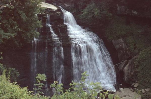 Waterfall Art Print featuring the photograph 031207-8 by Mike Davis