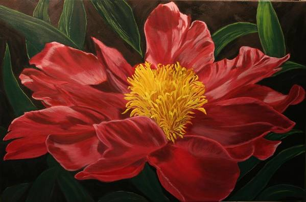 Floral Art Print featuring the painting Peony Japonica by Robert Tower
