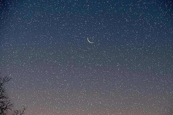 Art Print featuring the photograph Starry Morning Sky by Luciana Seymour