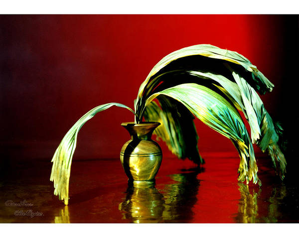 Leaf Art Print featuring the photograph Still Life - 5 by Gautam Chatterjee