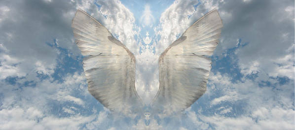 Sky Art Print featuring the photograph Wings 1 by Bob Bennett