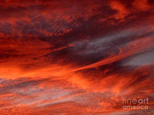 Sunset Art Print featuring the photograph Fire in the Sky by Julia Walsh