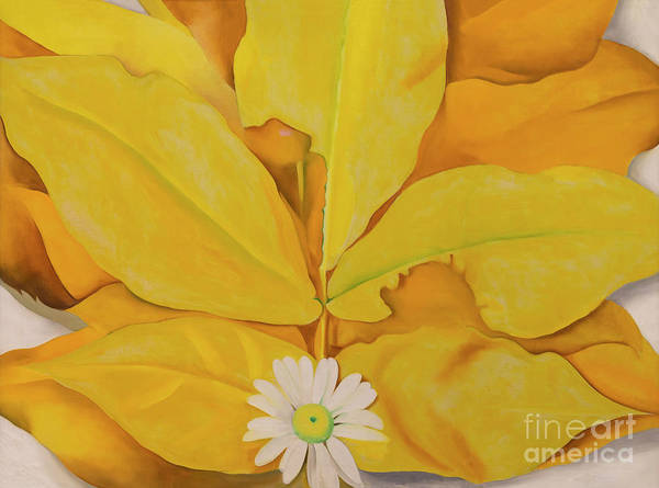 Yellow Hickory Leaves with Daisy by Georgia O'Keeffe