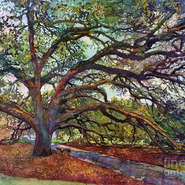 The Century Oak by Hailey E Herrera