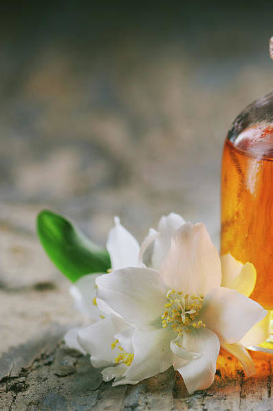 Essential oil with jasmine flower by Jelena Jovanovic
