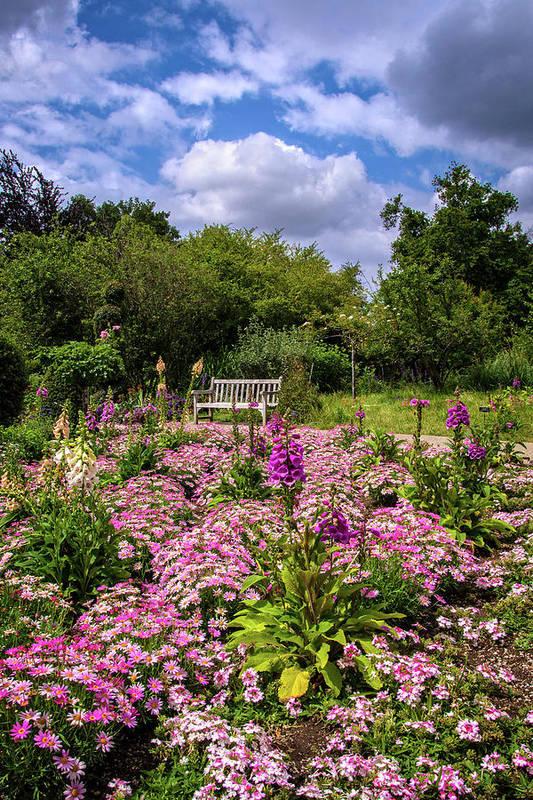 Restful Spot in the Garden by Lynn Bauer