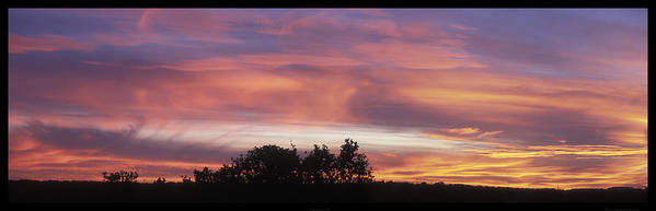 Sunset; Trees; Silhouette; Sky; Colorful; Pink; Blue; Orange; Clouds; Spicewood; Texas; Texas Hill Country; Sky; Panorama; Aspect Ratio 1:3 Art Print featuring the photograph 2004-12-12 Sunset November 7 2004 by Alan Tonnesen