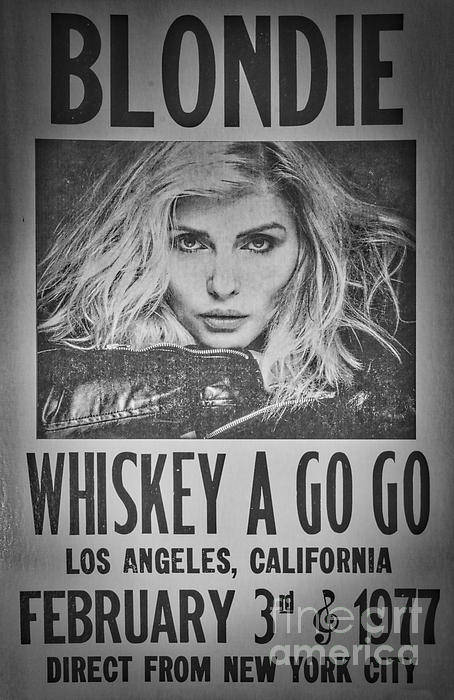 Blondie At The Whiskey A Go Go by Mitch Shindelbower