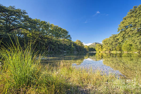 Frio River - Texas Hill Country Landscape by Andre Babiak