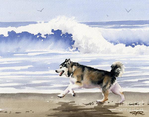 Alaskan Malamute At The Beach by David Rogers