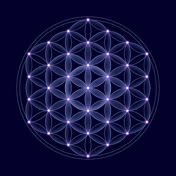Cosmic Flower of Life With Stars by Peter Hermes Furian