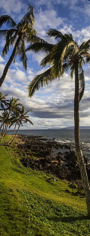 Maui Art Print featuring the photograph Tropical Days by Brad Scott