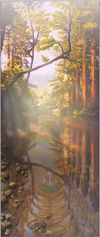 Cathedral Art Print featuring the painting Cathedral Redwoods by Robby Donaghey
