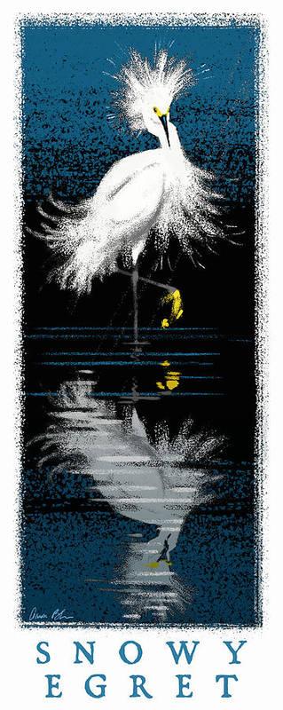 Birds Art Print featuring the digital art Snowy Egret by Aaron Blaise