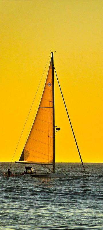 Sailing Art Print featuring the photograph Sunset Sailing by Liz Vernand