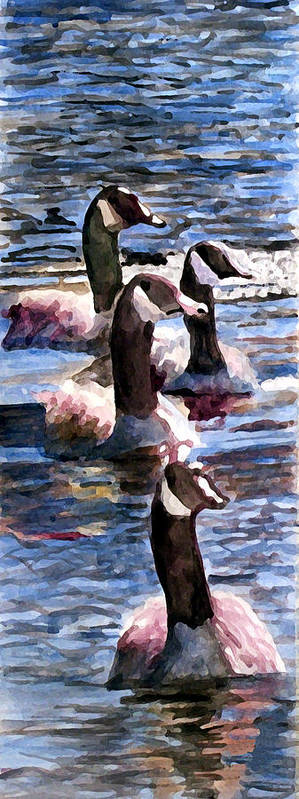 Geese Art Print featuring the painting Gaggle Of Geese by Jim Phillips
